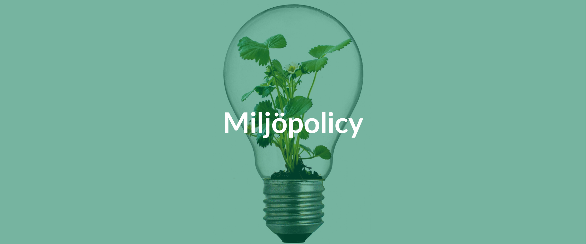 Miljöpolicy | Företagsväxter