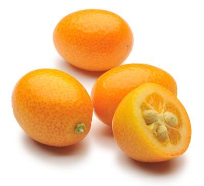 Kumquats0.jpg