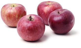 apple0.jpg