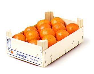 clementin0.jpg