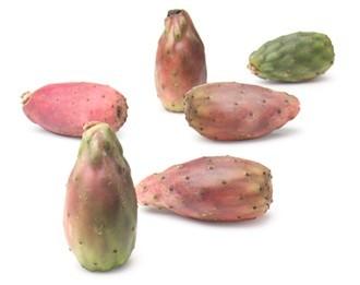 kaktusfikon0.jpg